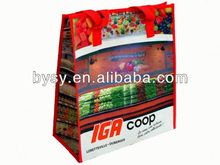Picture printing pp woven travel bag