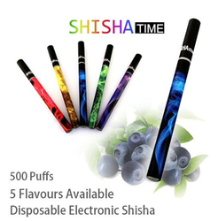 Hot 500 puffs eshisha with different fruit tastes popular disposable ehookah eshisha
