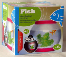 RoHS approval glass gold fish bowl be in home temperature