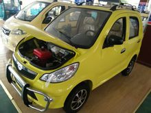 electric fuel/petrol car made from China