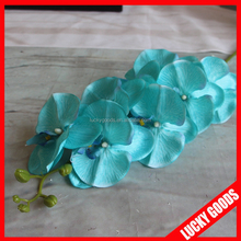 lf337 artificiale di plastica bomboniera tiffany orchidea per la decorazione