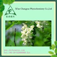 Herb medicine sophora flower extract