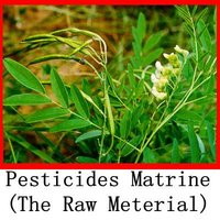Plant extract pesticide Matrine 90% TC