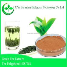 GMP factory supply pure green tea powder, green tea extract