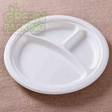 de bagaço de cana pratos de comida biodegradável