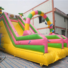 inflatable slides small , NO.15 top quality event inflatable slides
