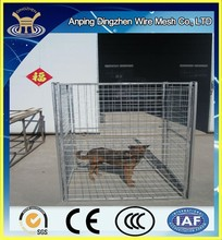 High Quality Dog Cage Malaysia / Dog Cage Popular in Malasia / Malasia Used Dog Cage