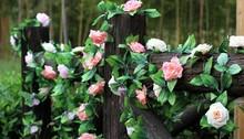 Todos los tipos de flores de exportación de China