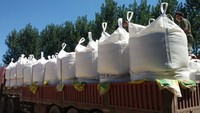 China fertilizer 46% prilled urea