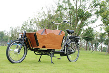9041E Nexus 8 speeds hydrualic disc brake electrical cargo bike/bicycle/vintage bike with pedal