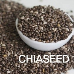 Whole sale Chia seed extract 4:1 pure natural/ organic Chia seed extract 4:1 in bulk