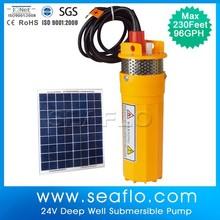 SEAFLO Energia Solar Sistema de Irrigação Bomba de água para irrigação