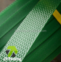 High Strength PP / PET / Steel Strapping Band for Auto & Semi-Auto Strapping Machine and Strapping Tools