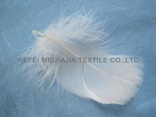 plumas de ganso para la venta