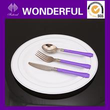 "ET-03 10.0"" nice disposable plastic dinner plate for wedding"
