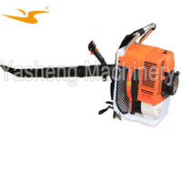 Gasoline Knapsack Grass Clipping Cleaning Blower