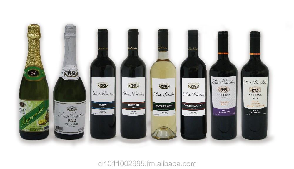 Chileno Merlot vermelho wine Vineyard papai Catalina Chile