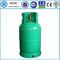 Valves Equipped Competive Steel Small LPG Gas Cylinder Price Kitchen Cooking Cylinder Price