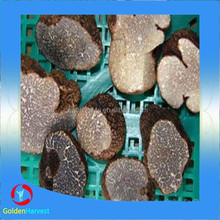 Chinese fresh desert black truffle
