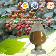 Extracto de pimiento de la piperina 10%- 99% de alta calidad de origen china