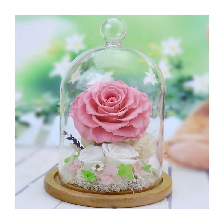 Оптовая продажа розовый в стеклянной форме купола любовь сохранилась настоящий вечный цветок Роза