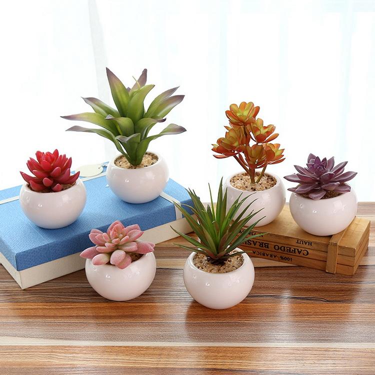 Surtidos de imitación suculentas Artificial Cactus suculentas fingió plantas de aire con gris macetas conjunto de 5