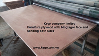 Plywood with Vietnam face all thickness