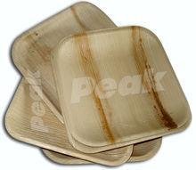 Eco Friendly Compostable Palm leaf Plates Manufacturers