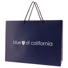 """Matte Laminated Eurotote Shopping Bag - features cardboard bottom, dimensions are 16"""" x 6"""" x 12"""" and comes with your logo."""