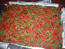 Fresh red chilli in Vietnam with high quality
