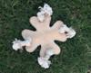 Designer dog product, dog plush toy ,dog chewing ,