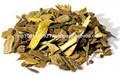 Berberis aristata / Daru Haldi / árbol cúrcuma indio agracejo / oftálmica agracejo