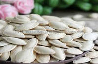 good quality hot sale special dried white seeds pumpkin in Vietnam