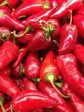 Pepper, Chili, Paprika, Kurkuma, Cloves,