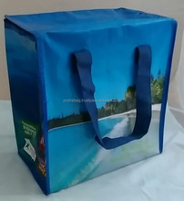 Laminated PP woven shopping bag reusable eco-friendly material CHEAP price cooler bag with zipper closure