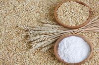Food Grade wheat flour high class