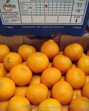 Fresh Citrus Fruits (Orange, Mamdarin, Clementine),Fresh clementine