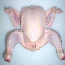 Halal Frozen Whole Chicken, Halal Chicken Breasts