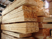 500m3 MAHOGANY Sawn Timber