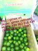 Fresh Vietnamese lime high quality