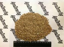 animal feed wheat grain