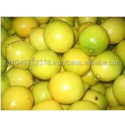 GOOD QUALITY Fresh Lemon