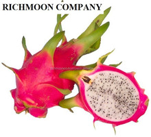 FRESH DRAGON FRUIT WITH BEST PRICE