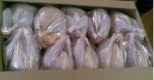 Best Exporter Halal Frozen Whole Chicken From Brazil