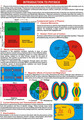 Murales - Física (10) Gráficos