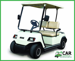 ECAR - Price 2 Seater Electric Solar Buggy Car LT-A2