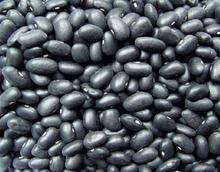 New Crop Black Kidney Bean