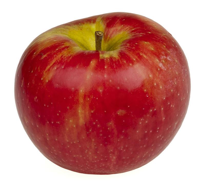 Apple Oil in Bulk