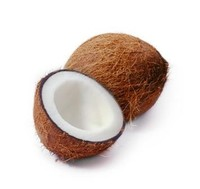100% Fresh Indian Coconut For Sale