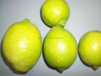 fresh eurika a lemon